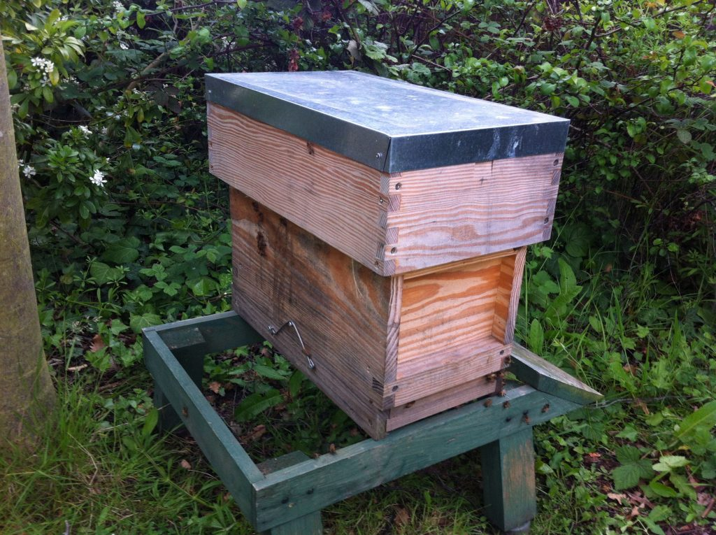 The nuc - now with the swarm of bees inside along with the old queen