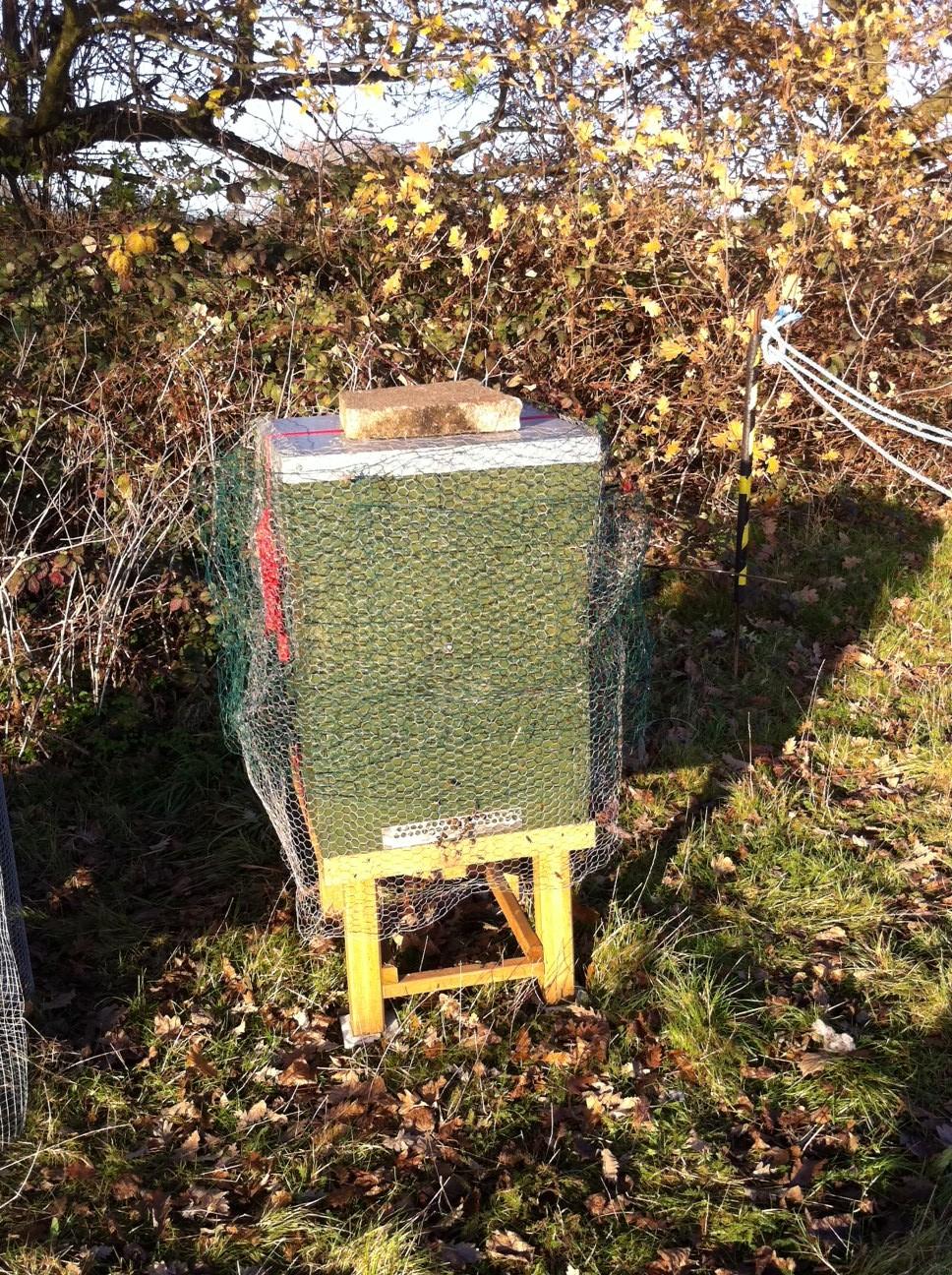 Avery Hill Meadow Beehive